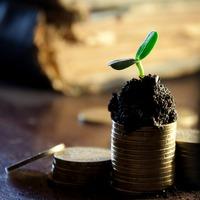 Ulustrační obrázek k akci Minimalismus a vaše finance